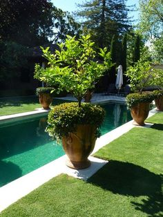 backyard landscaping, pool ~ toorak, melbourne pool landscape Anduze and Ceramic Garden Planters – French Garden Pots for Spring! Backyard Pool Landscaping, Landscaping Design, Landscaping Borders, Big Backyard, Landscaping Company, Modern Landscaping, Backyard Ideas, Pot Jardin, Interior Garden