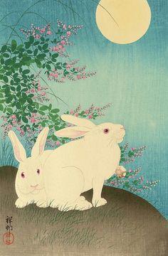 Tumblr Hand Made Greeting Cards, Making Greeting Cards, Greeting Cards Handmade, White Rabbits, Bunny Rabbits, Japanese Illustration, Handmade Greetings, Vintage Images, 19th Century