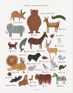 Anteaters & Zebras & Elk, Oh My!: Alphabet Animal Posters & Prints