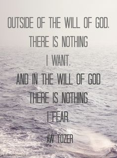 Outside the will of God there is nothing I want, and in the will of God there is nothing I fear. - A. W. Tozer