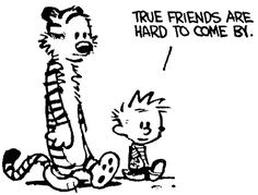True friends are hard to come by.