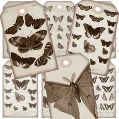 Aged Sepia Butterfly  (1) Hang Tags Digital Collage Sheet - Buy 3 sheets and get 4th FREE - Printable Download via Etsy