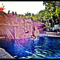 Pool party in the hills #la #bh #lovvvit