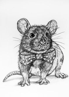 Mouse with a Bow Tie 58  Original Pencil by rachelledyer on Etsy