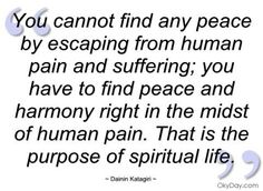 http://www.thequotepedia.com/images/104/you-cannot-find-any-peace-by-escaping-from-human-pain-and-suffering-suffering-quote.jpg