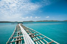 The Wild North | 5 Great Barrier Reef precincts you never knew existed