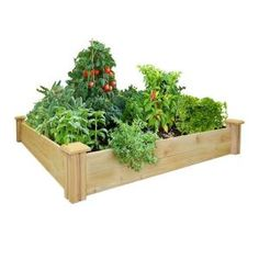 I have 4 of these and they are awesome!  We got 8 for school. home depot-was $39 now $29  Good looking, easy & cedar.  Greenes Fence 48 in. x 48 in. Cedar Raised Garden Bed