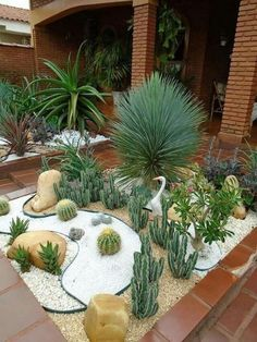 33 Inspiring Low Maintenance Backyard Landscaping Ideas - Coming up with backyard landscape ideas is not always easy. Did you spend weeks picking out the current color for your house and landscaping your fron. Succulent Landscaping, Front Yard Landscaping, Planting Succulents, Landscaping Ideas, Backyard Ideas, Mid Century Landscaping, Low Maintenance Backyard, Front Yard Decor, Dry Garden