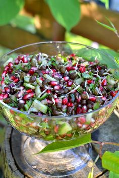 Chaat-style Salad with Sprouted Bengal Gram | Spice in the City