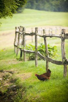 followthewestwind: (via Pin by Lori Holt on Farm Girl… | Pinterest)
