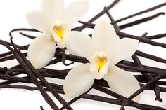 Organic, Natural Vanilla Bean Flavoring