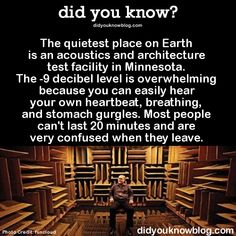 Did you know? Did you know? Did you know? Did you know? Oh The Places You'll Go, Cool Places To Visit, Places To Travel, The More You Know, Good To Know, Wtf Fun Facts, Random Facts, Crazy Facts, Random Stuff