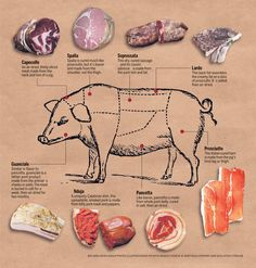 PORK...Cured Meats chart