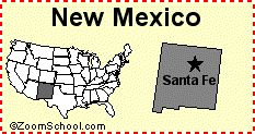Idiots may not vote.    http://www.dumblaws.com/laws/united-states/new-mexico