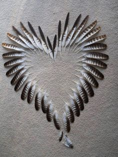 Feather Heart