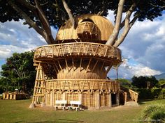 This Guadua bamboo treehouse by Colombian Architect Jaime Peña is the result of a simple bamboo dollhouse inquiry that got way, way out of hand. Bamboo House Plant, Bamboo House Design, Bamboo Tree, Bamboo Garden, Bamboo Plants, Garden Bed, Plants Near Me, Bamboo Architecture, Vernacular Architecture