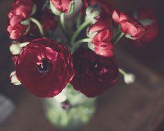 by liz.rusby, via Flickr