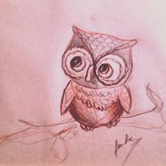 Owl sketches - Google Search