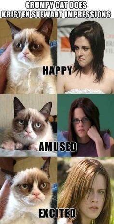 Grumpy Cat vs. Kristen Stewart Impressions - http://www.jokideo.com/