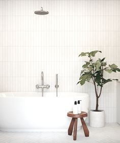 bathroom tile ideas for wall, design gallery, small bathroom, layout designs floor tile size. These designer bathrooms use tile, on floors, walls, and backsplashes to stylish effect Bohemian Bathroom, Toilet, Flush Toilet, Toilets, Powder Room, Toilet Room, Bathroom