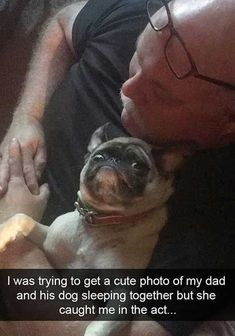 40 Funny Pictures For Today (#88) #DogFunny Cute Dog Memes, Most Hilarious Memes, Dog Quotes Funny, Funny Dogs, Funny Memes, Funny Facts, Jokes, Dog Funnies, Freaking Hilarious
