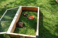 tortoise box   Outside enclosures - Tortoise Forum - Tortoise Husbandry Community
