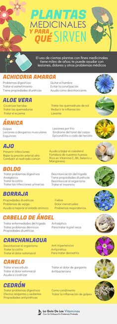 Exceptional health tips info are readily available on our web pages. Read more and you will not be sorry you did. Natural Home Remedies, Herbal Remedies, Health Remedies, Calendula Benefits, Coconut Health Benefits, Healthy Oils, Healthy Food, Medicinal Plants, Herbalism