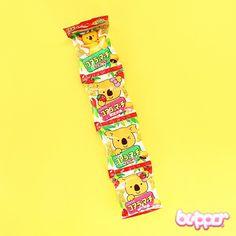 Lotte Koala March Chocolate