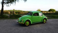 Selina's #limegreen and #yellow #VW #bug