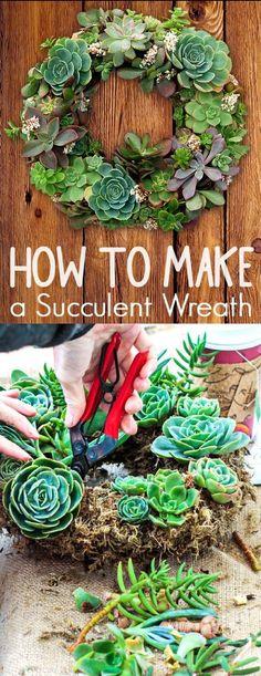 How to Create a Succulent Garden Wreath (Diy Garden Projects) Succulent Planter Diy, Succulent Wreath, Succulent Gardening, Cacti And Succulents, Planting Succulents, Container Gardening, Organic Gardening, Moss Wreath, Planter Ideas