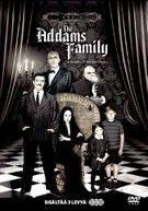 Addams Family - Kausi 1 (3 disc)  (DVD)
