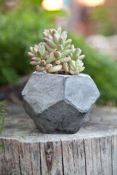 Dodecahedron Geometric Concrete Succulent Cacti Planter