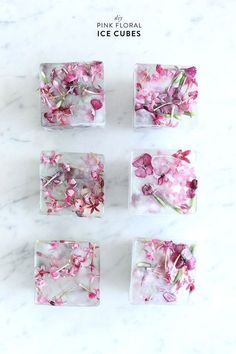 The best DIY projects & DIY ideas and tutorials: sewing, paper craft, DIY. Diy Crafts Ideas How to make your own floral ice cubes! Love this DIY using edible flowers. Great party planning idea and easy tutorial. Flower Ice Cubes, Fruit Ice Cubes, Party Salads, Pink Parties, Edible Flowers, Diy Flowers, Wedding Flowers, Flowers Garden, Flower Diy