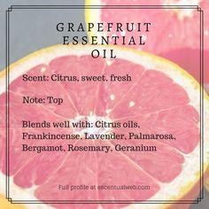 Grapefruit (Citrus paradisi) - Escentual Web