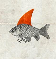 Goldfish with a Shark Fin Framed Art Print by Vin Zzep - Vector Black - Shark Fin, Whale Sharks, Illustration Art, Illustrations, Fish Art, Grafik Design, Collage Art, Framed Art Prints, Small Tattoos