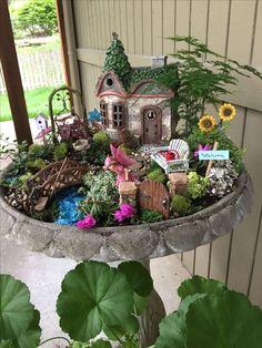 Fairy Garden in a Bird Bath ❤️