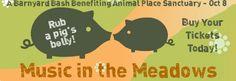 Photos - The San Francisco Vegetarian Meetup (San Francisco, CA) - Meetup