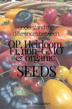 Understanding a seed catalouge can be difficult if you don't understand the language. Wondering what the differences between organic, non-gmo, open-pollinated, hybrid and heirlooms seeds are? Check out this post for all the answers!