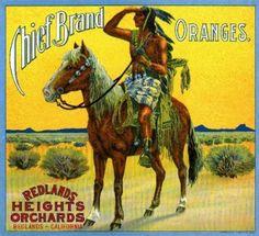 Chief Brand Oranges (Oranges) 1916 - Redlands Heights Orchards - Redlands, CA