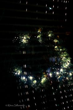 Ritva Sillanmäki-201214 (24 of 24) Art Photography, Christmas Tree, Holiday Decor, Home Decor, Teal Christmas Tree, Fine Art Photography, Decoration Home, Room Decor, Xmas Trees