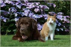 Hessel and Hannes #bloopermonday