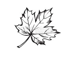 black and white leaf tattoo - Google Search