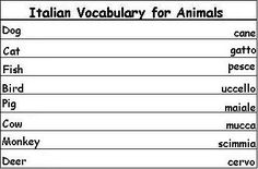 Italian Vocabulary Words for Animals - Learn Italian