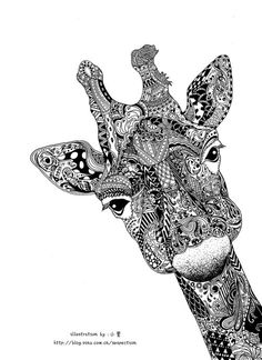 Remarkable black ink drawing of a giraffe posted on an abandoned blog of a talented young female artist in China.