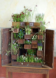 We <3 to #upcycle crafts! This Herb Garden in Recycled Drawers is a great #green idea.