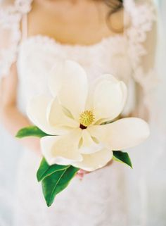 Magnolias make a stunning single flower bouquet.
