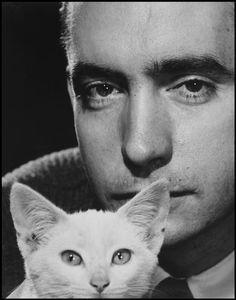 Magnum Photos Edward Albee with kitten