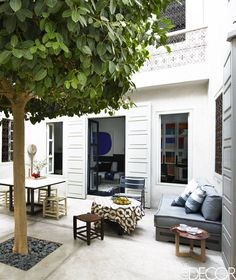 Interior courtyard with a large fig tree in a Moroccan riad via @thouswellblog
