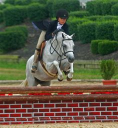 Meredith Darst and Elation won the Small Pony Hunter Grand Championship at the 2010 USEF Pony Finals.