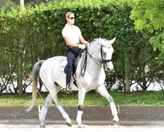 Royal Angel- Intermediare 1, mare